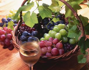 4種類のブドウとワインの写真素材 [FYI01927424]