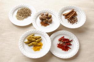 赤唐辛子と白胡椒とウコンとナツメグとシナモンの写真素材 [FYI01927511]
