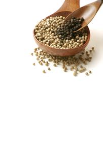 黒胡椒と白胡椒の写真素材 [FYI01927530]