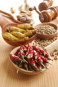 赤唐辛子と白胡椒とウコンとナツメグとニンニクの写真素材 [FYI01927542]