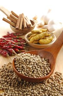 赤唐辛子と白胡椒とウコンとシナモンとニンニクの写真素材 [FYI01927932]