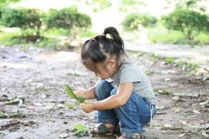 公園で遊ぶ女の子の写真素材 [FYI01928384]