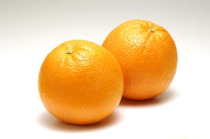 2個のオレンジの写真素材 [FYI01928411]