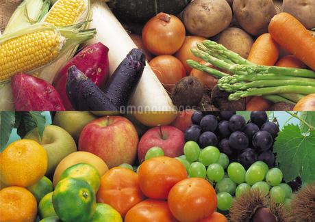 果物の集合と野菜の集合イメージ・コラージュの写真素材 [FYI01928431]