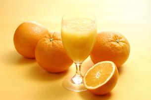 オレンジジュースとオレンジの写真素材 [FYI01928559]