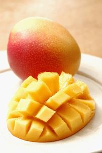 カットされたマンゴーと1個のマンゴーの写真素材 [FYI01928580]