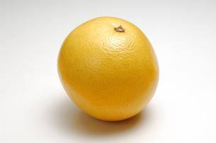 1個のグレープフルーツの写真素材 [FYI01928625]