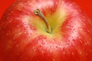 リンゴのアップの写真素材 [FYI01928692]