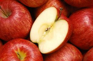 リンゴの断面と一面のリンゴの写真素材 [FYI01928728]