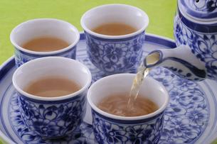 中国茶(鉄観音茶)の写真素材 [FYI01928740]