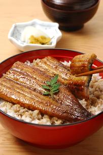 うな丼の写真素材 [FYI01928973]