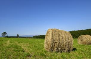 牧草ロールの写真素材 [FYI01928997]
