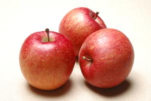 リンゴ(サンフジ)の写真素材 [FYI01929707]
