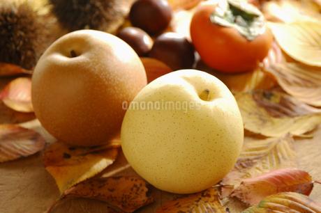 梨と柿と栗の写真素材 [FYI01929816]