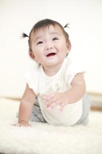 はいはいする女の赤ちゃんの写真素材 [FYI01929971]