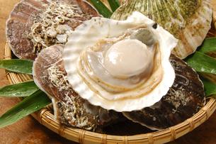 ホタテ貝の写真素材 [FYI01930052]