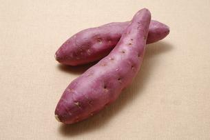 サツマイモの写真素材 [FYI01930308]