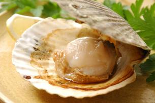 ホタテ貝の写真素材 [FYI01930377]