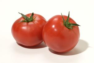 トマトの写真素材 [FYI01930510]
