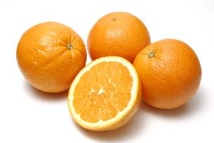 オレンジの写真素材 [FYI01930589]
