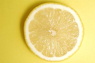 レモンスライスの写真素材 [FYI01930664]