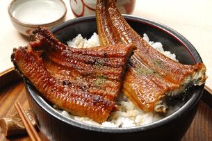 うな丼と日本酒の写真素材 [FYI01930823]