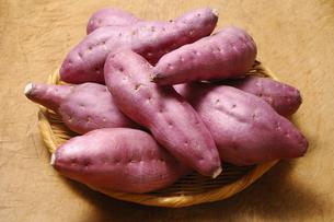 サツマイモの写真素材 [FYI01930933]