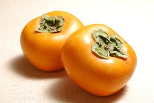 柿(種無し)の写真素材 [FYI01930995]