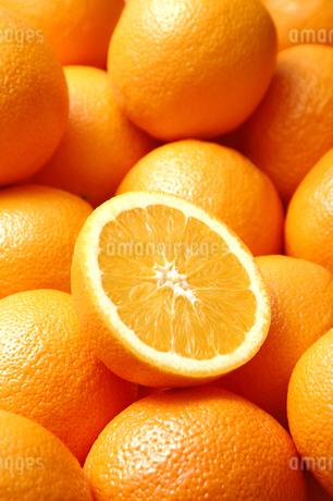 一面のオレンジとオレンジの断面の写真素材 [FYI01931371]
