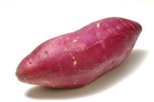 1本のサツマイモの写真素材 [FYI01931465]