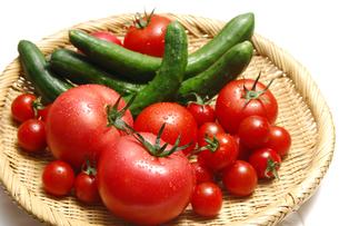 トマトとミニトマトとキュウリの写真素材 [FYI01931473]