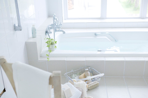 浴槽のインテリアの写真素材 [FYI01931884]