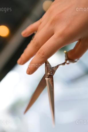 鋏を持つ手の写真素材 [FYI01935178]
