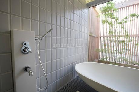 バスルームの写真素材 [FYI01936500]