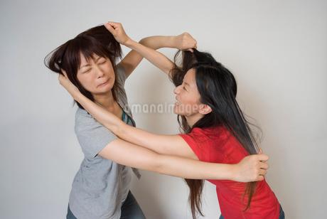 髪をつかみあう女性の写真素材 [FYI01937928]