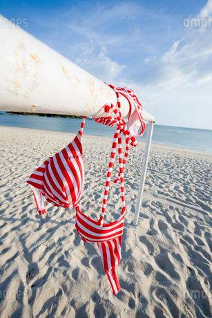砂浜に干した水着の写真素材 [FYI01938041]