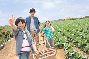 一輪車を押して歩く父と子供2人の写真素材 [FYI01938651]