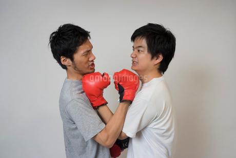 ボクシンググローブで殴りあう男性の写真素材 [FYI01938893]