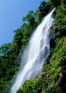 養父市の天滝の写真素材 [FYI01938945]