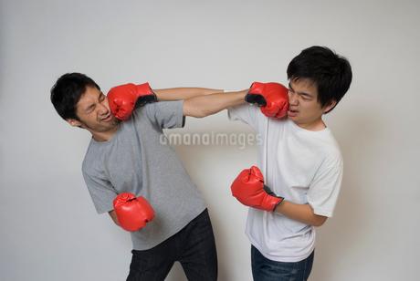 ボクシンググローブで殴りあう男性の写真素材 [FYI01939141]