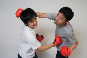 ボクシンググローブで殴りあう男性の写真素材 [FYI01940437]