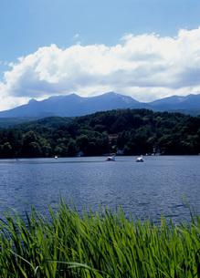 松原湖の写真素材 [FYI01941855]
