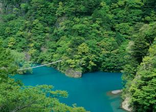 寸又峡 夢の吊橋の写真素材 [FYI01943738]