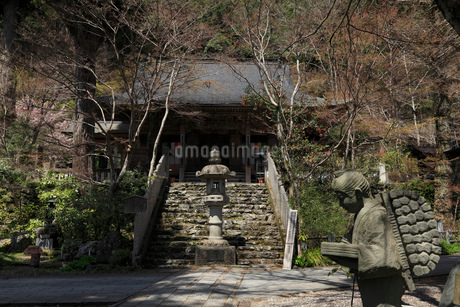 定福寺 本堂の写真素材 [FYI01944463]