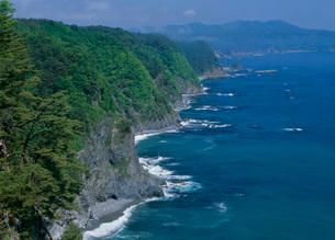 鵜の巣断崖、海の写真素材 [FYI01945128]