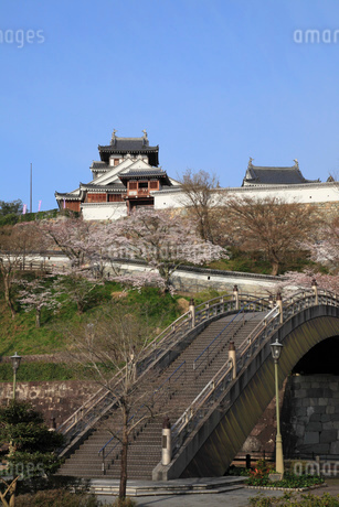 福知山城と昇龍橋の写真素材 [FYI01945373]