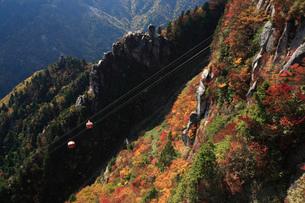 御在所岳の紅葉とロープウエイの写真素材 [FYI01945415]