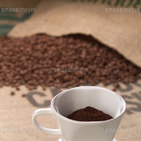 コーヒーと豆の写真素材 [FYI01945696]