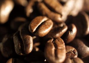 コーヒー豆の写真素材 [FYI01945727]