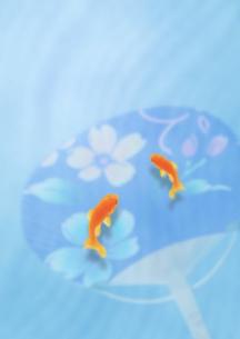 金魚の夏のイメージのイラスト素材 [FYI01945899]
